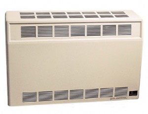 Empire DV25 Direct Vent Heater