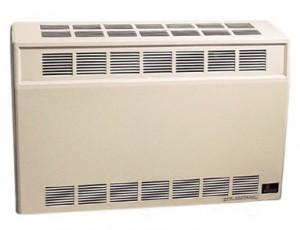 Empire DV25 Direct Vent Heater